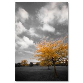 Αφίσα (μαύρο, λευκό, άσπρο, φύση, σύννεφα)